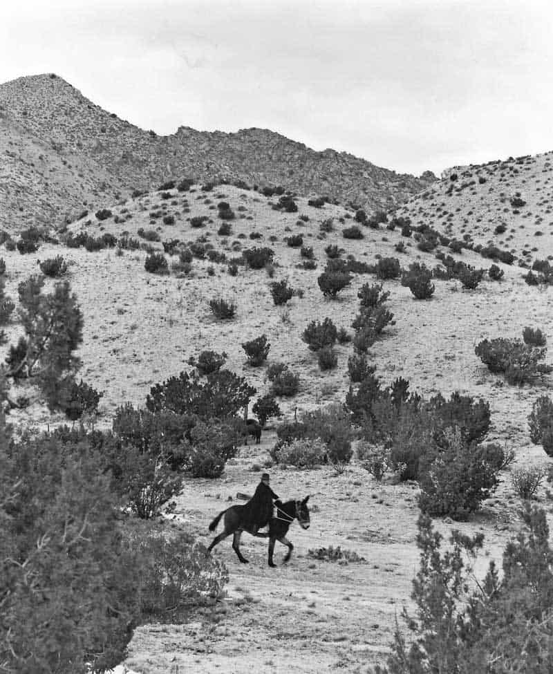 Harold Joe Waldrum riding Moon the mule at his ranch on Ladron Mountain
