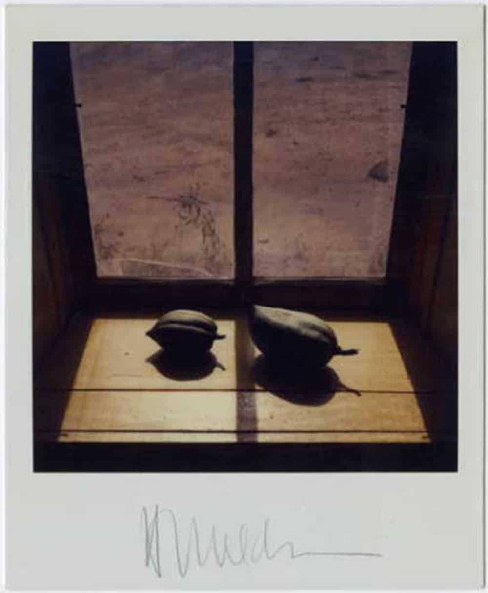 Polaroid by Harold Joe Waldrum: pods in the windowsill at the Joseph Sharp Studio in Taos NM
