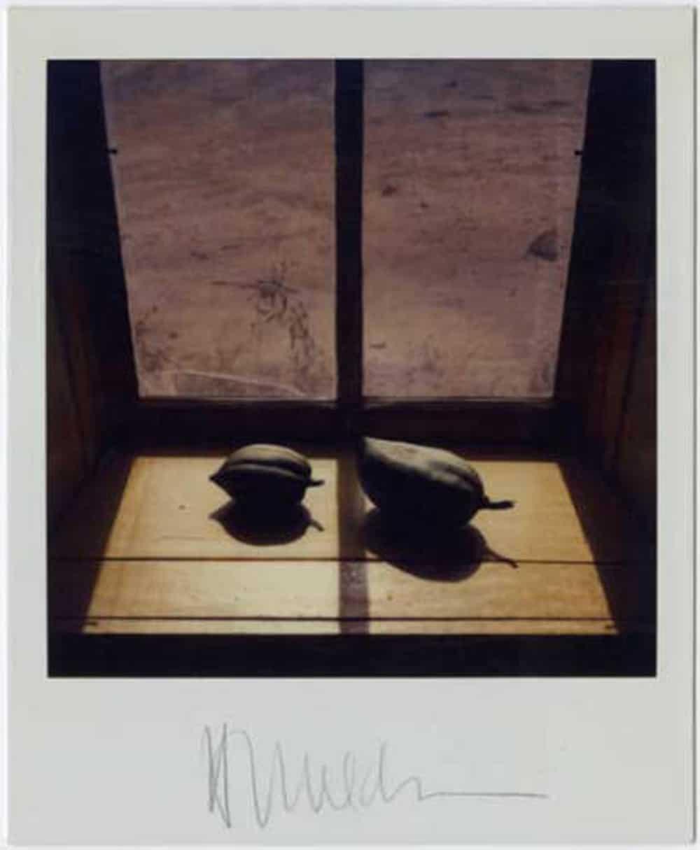 Polaroid by Harold Joe Waldrum: pods in the windowsill at the Joseph Sharp Studio in Taos NM